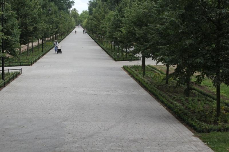 W parku zasadzono 60 tysięcy roślin