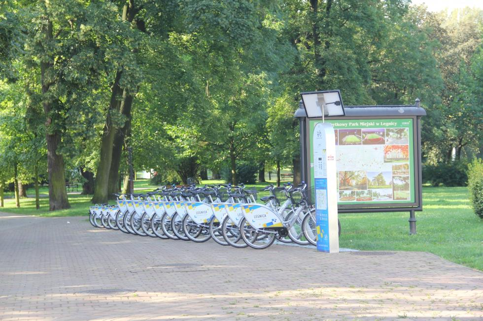 Legnicki Rower Miejski. Miasto ogłosiło przetarg na wybór firmy