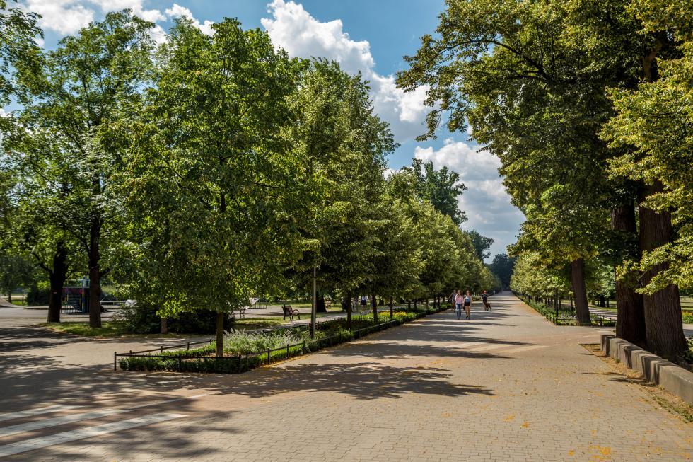 Przetarg na rozbudowę monitoringu  wparku Miejskim