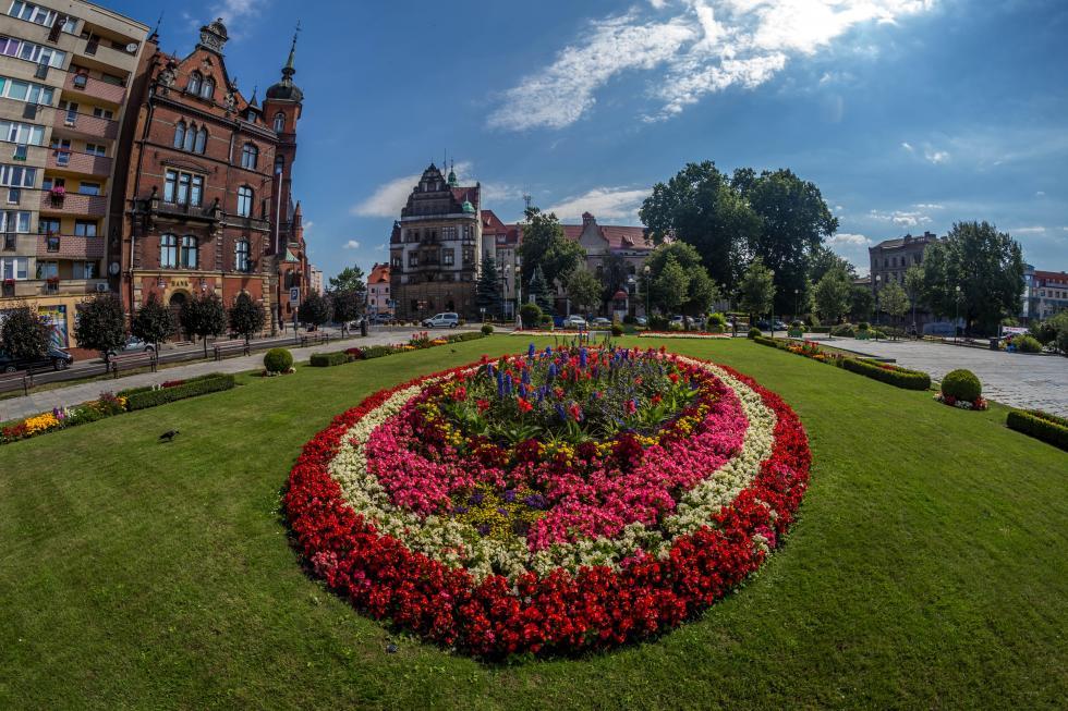Zagłosuj na Legnicę, najpiękniej ukwiecone miasto