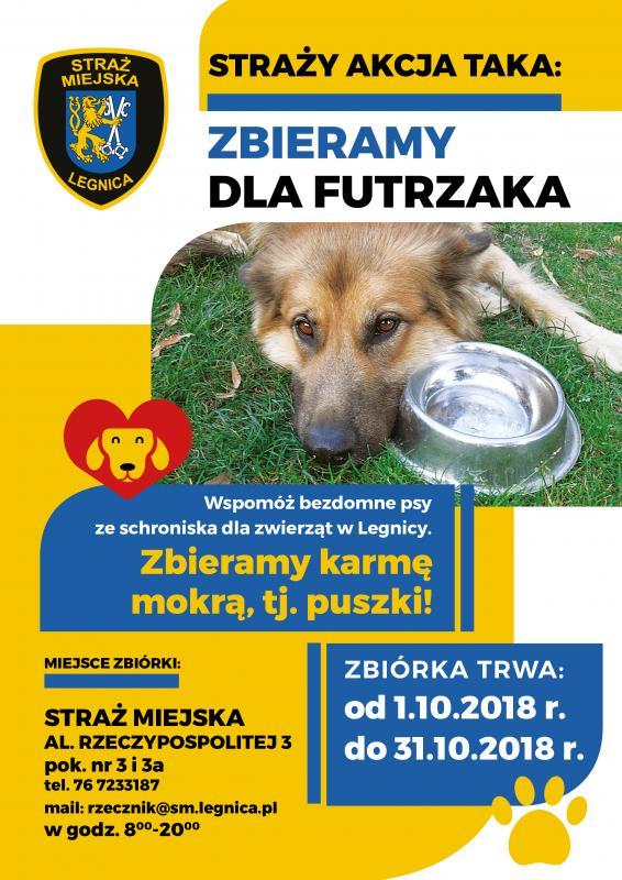 Pomóż bezdomnym zwierzętom. Przyłącz się doakcji strażników miejskich
