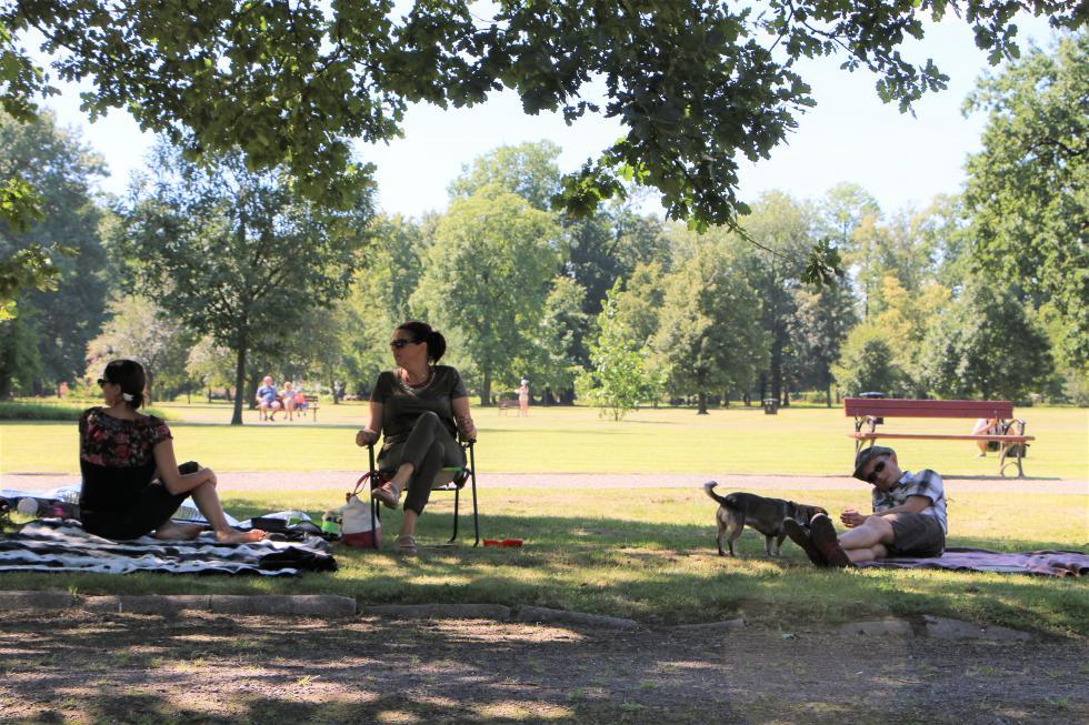 Ekoleg zajmie się utrzymaniem zieleni wlegnickich parkach