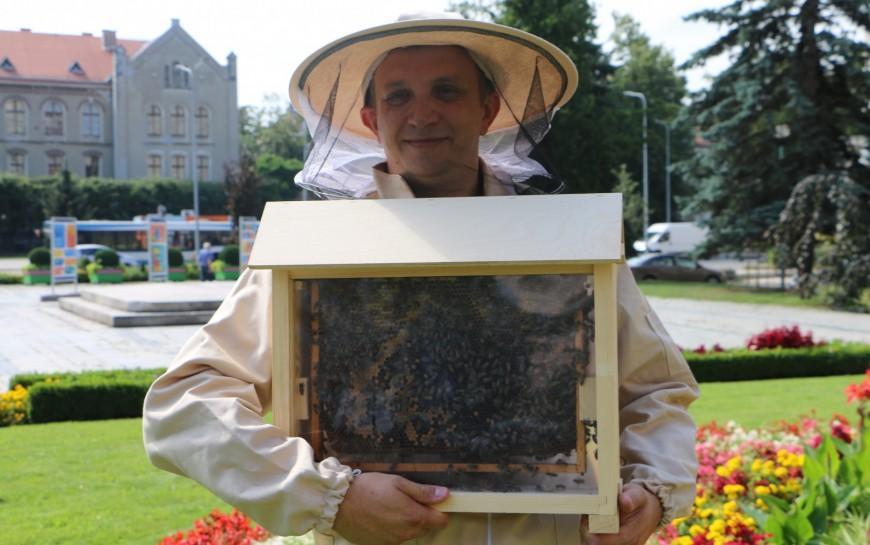 Niedzielne spotkanie zpszczołami