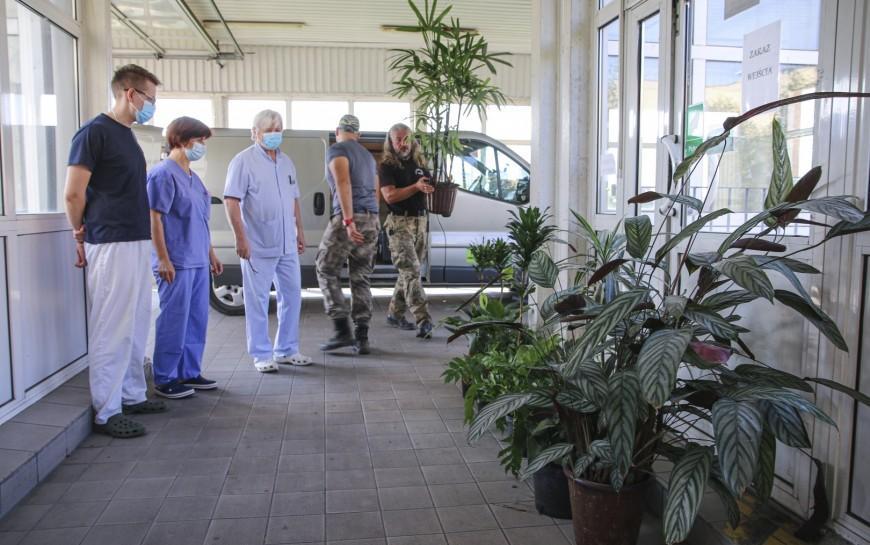 Egzotyczne rośliny zpalmiarni dolegnickiego szpitala