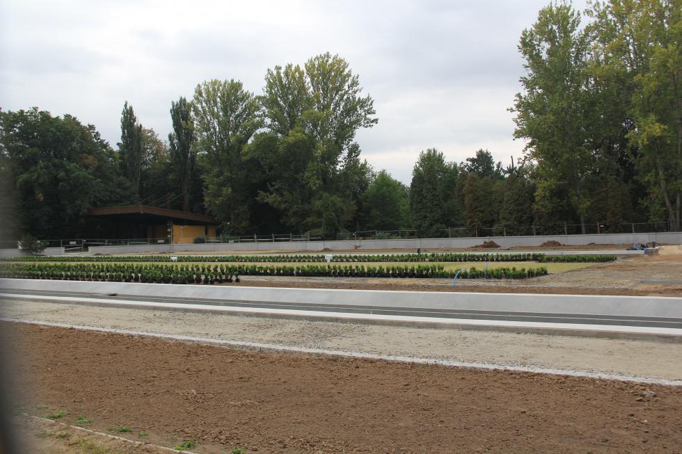Rozpoczęło się sadzenie krzewów ikwiatów wczęści francuskiej parku