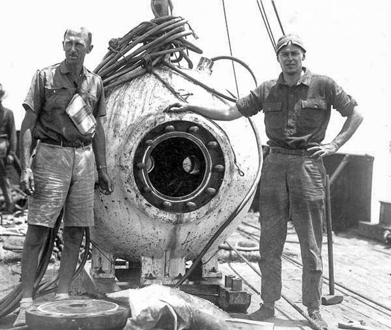 Skrzydlate badaczki wodnych głębin